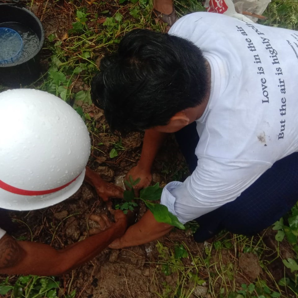 """Planting trees in Ward 7 on World Environment Day"""